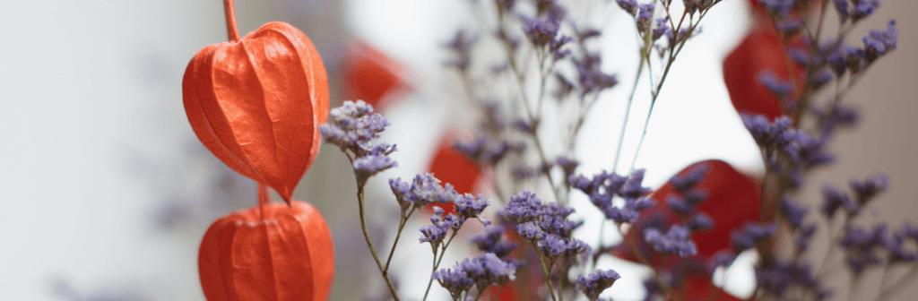 Sfeervolle gedroogde bloemen in de therapie ruimte