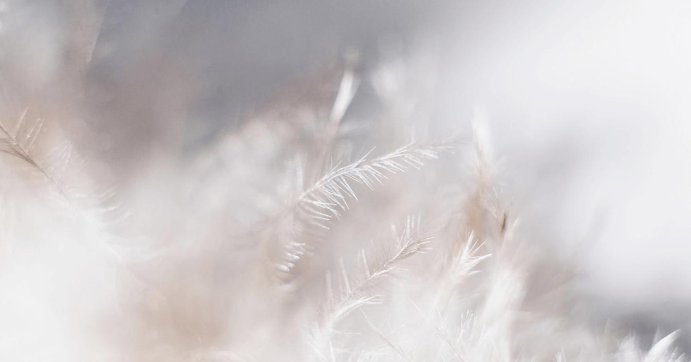 Uitnodiging tot zachtheid en lichtheid
